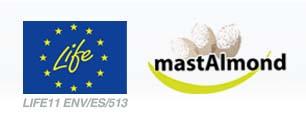 El proyecto Mastalmond continúa avanzando