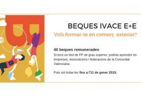 BECAS IVACE E+E