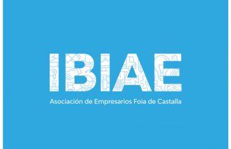 Junta directiva de IBIAE