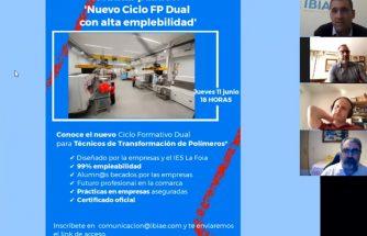 Vídeo del webinar 'Ciclo de FP Dual con alta empleabilidad'