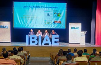 IBIAE celebra su XXVIII Asamblea Ordinaria